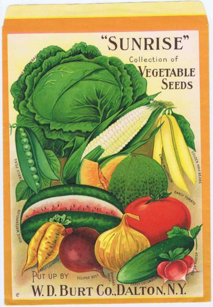 """J338""""SUNRISE"""" COLLECTION OF VEGETABLE SEEDS"""
